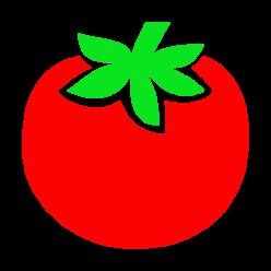 Tuteur tomate .com
